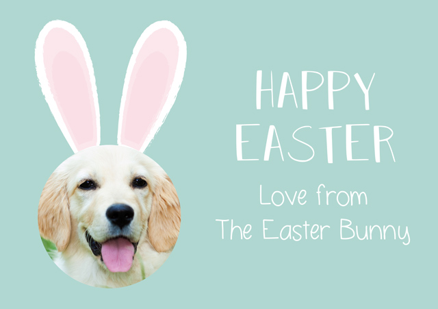 Create a Photo Easter Card Bunny Ears Photo Card
